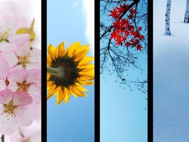 春夏秋冬、好きな季節でわかる相性 | marouge|明日の「なりたい」自分に